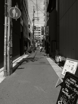 no surf   monochrome kobe