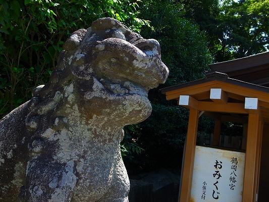 展示会のついでに、鎌倉、伊豆に寄り道観光。